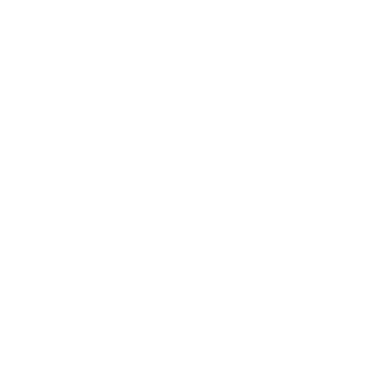 Safe Network Logo